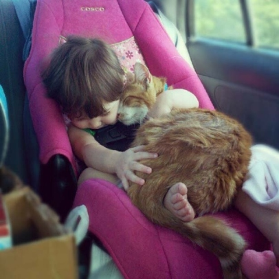 A very young pale-skinned child is sitting in a pink car seat, apparently asleep, and cuddling a large marmalade cat (almost as big as the child!) who is also apparently asleep.  Awww.
